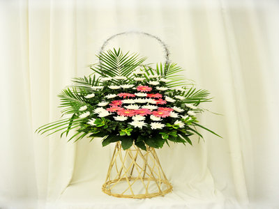 合肥市殡葬服务收费管理办法